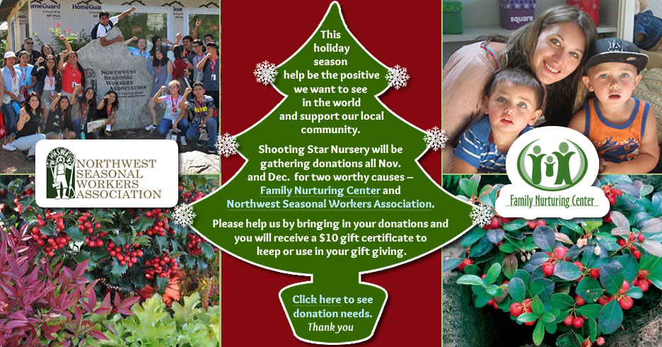 This holiday season help be the positive we want to see in the world and support our local community. Shooting Star Nursery will be gathering donations all Nov. and Dec. for two worthy causes - Family Nurturing Center and Northwest Seasonal Workers Association. Please help us by bringing in yur donations and you will receive a $10 gift certificate to keep or use in your gift giving. Click here or go to our Gift Certificates page to see donation needs. Thank you.