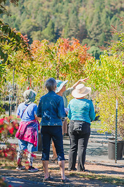 gardening class at Shooting Star Nursery