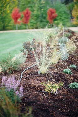 New to Gardening Series: Soil Prep and Mulch