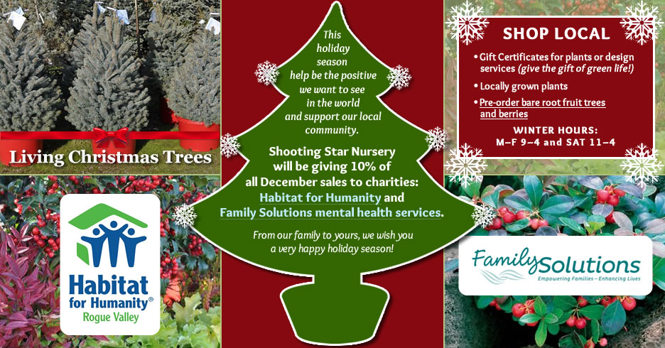 This holiday season help be the positive we want to see in the world and support our local community. Shooting Star Nursery will be giving 10% of all December sales to charities: Habitat for Humanity and Family Solutions mental health services. Living Christmas Trees, gift certificates, potted arrangements and more.